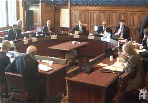 VLV provides evidence to Lords Committee